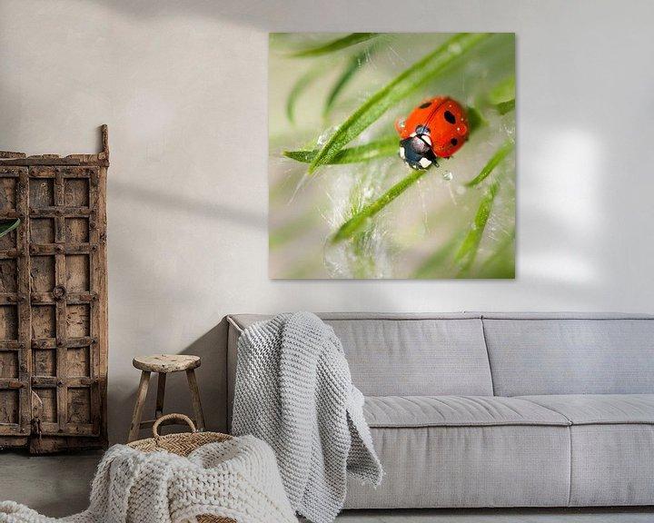 Sfeerimpressie: Lieveheersbeestje van Tamara Witjes