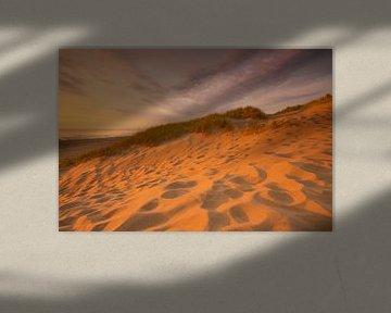 Strand en duin Wassenaar van Elroy Spelbos