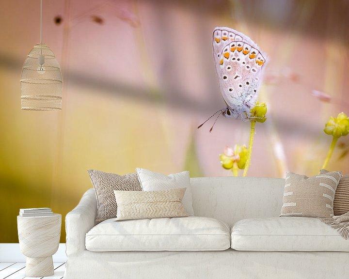Sfeerimpressie behang: Icarusblauwtje vlinder op bloem van Mark Scheper