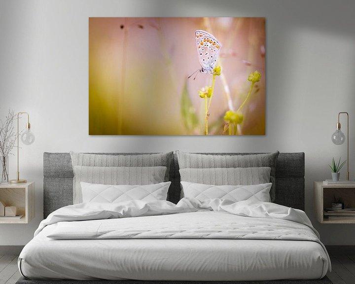 Sfeerimpressie: Icarusblauwtje vlinder op bloem van Mark Scheper
