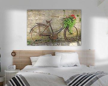 Altes rostiges Fahrrad mit einer Anlage im Korb von Nicolette Vermeulen