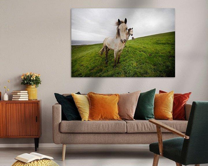 Sfeerimpressie: Wild horses van Eelko Lommers