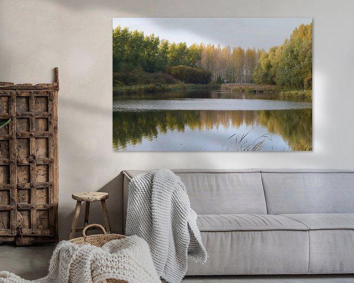 Sfeerimpressie: Najaar in de Dordtse Biesbosch van Nicolette Vermeulen