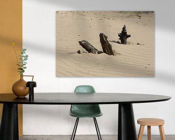 Hout in het zand van Spijks PhotoGraphics