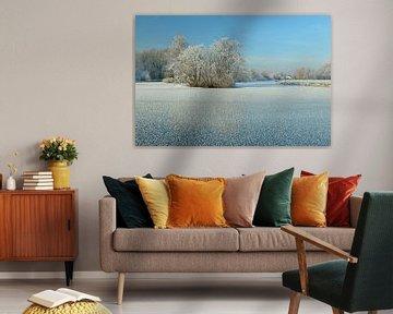 Bevroren plas met berijpte winterboom van Merijn van der Vliet