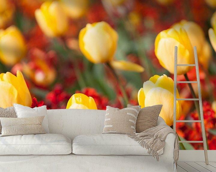 Beispiel fototapete: Gele tulpen von Ramon Bovenlander