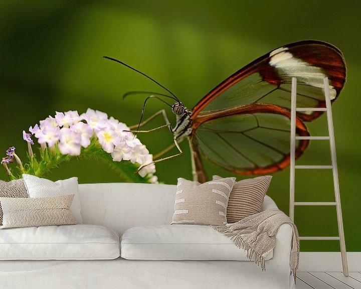 Sfeerimpressie behang: Doorzichtige vlinder op bloem van Rene Mensen