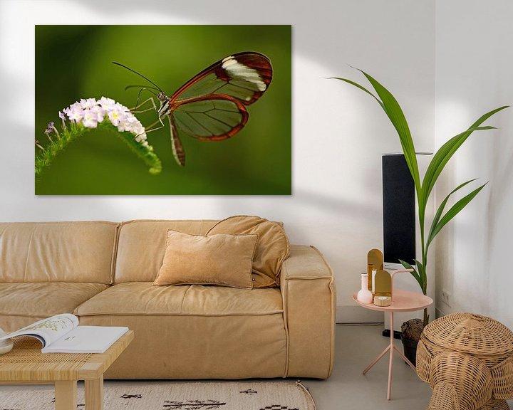 Sfeerimpressie: Doorzichtige vlinder op bloem van Rene Mensen