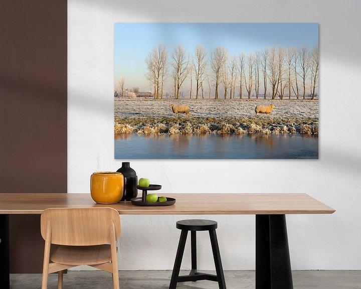 Sfeerimpressie: Berijpt winterlandschap met twee schapen van Merijn van der Vliet