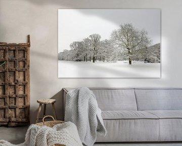 Park in de winter van Merijn van der Vliet