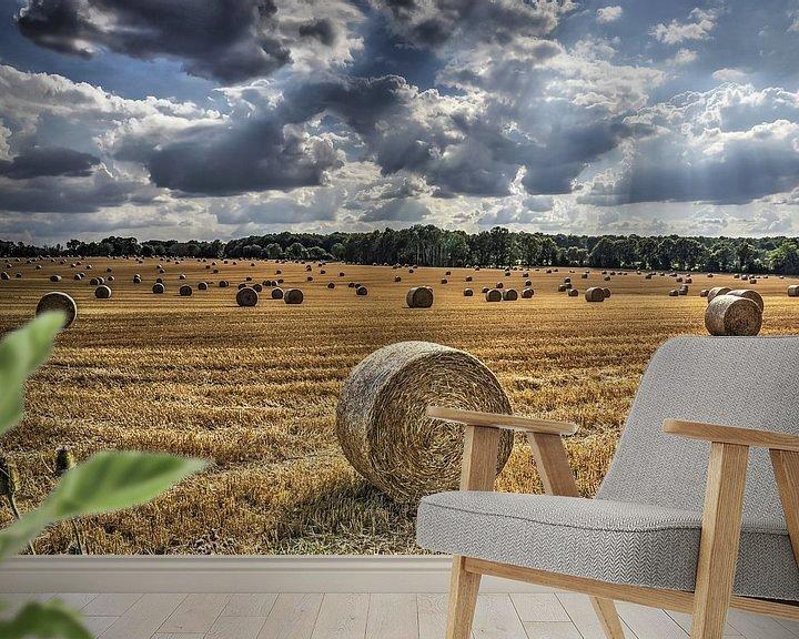 Sfeerimpressie behang: Strorollen op een veld in Frankrijk van Frans Blok