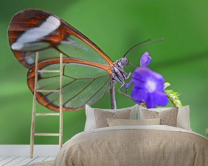 Impression: Glasswinged butterfly sur Rene Mensen