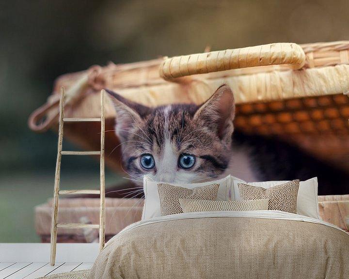 Sfeerimpressie behang: Peek-a-boo kitten! van Marloes van Antwerpen