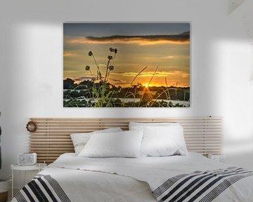 Zonsondergang met veldbloemen