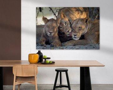 Leeuwen family van Richard Guijt Photography