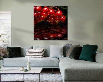 sprankelende druppels - rode vruchtjes van Christine Nöhmeier