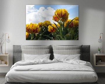 Gele tulpen van Esther van Lottum-Heringa