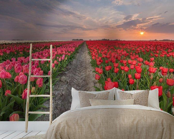Impression: Sunset at Zijldijk sur Ron Buist