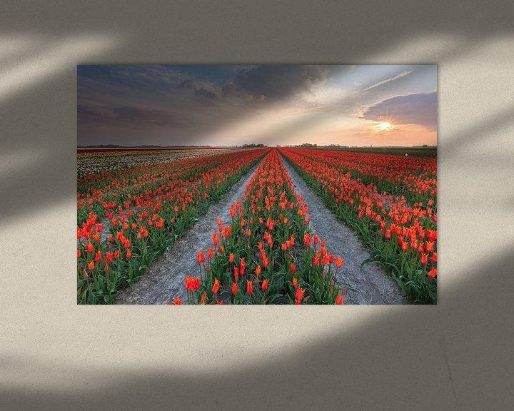 Sfeerimpressie: Zonsondergang in Zijldijk van Ron Buist