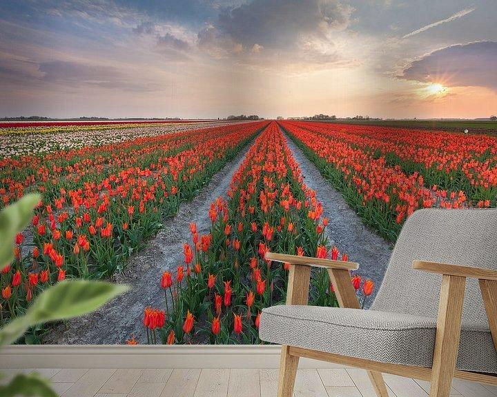 Sfeerimpressie behang: Zonsondergang in Zijldijk van Ron Buist