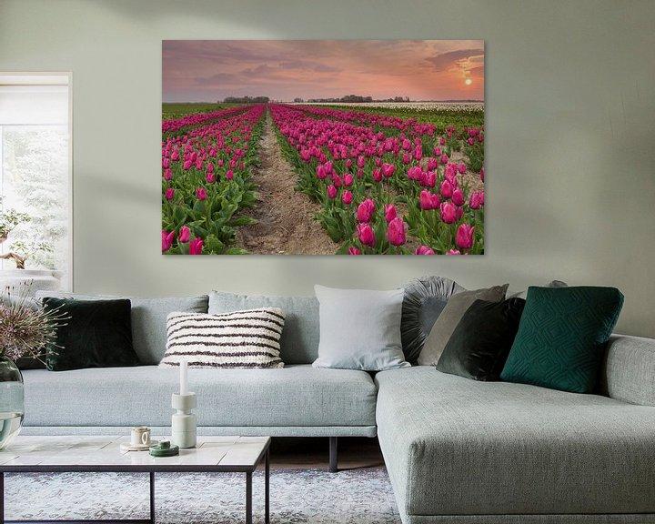 Impression: Zonsondergang bij Zijldijk sur Ron Buist