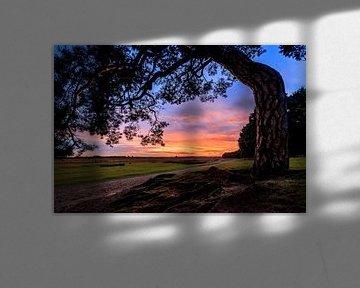 Ginkelse Heide Zonsondergang 2 van Joram Janssen