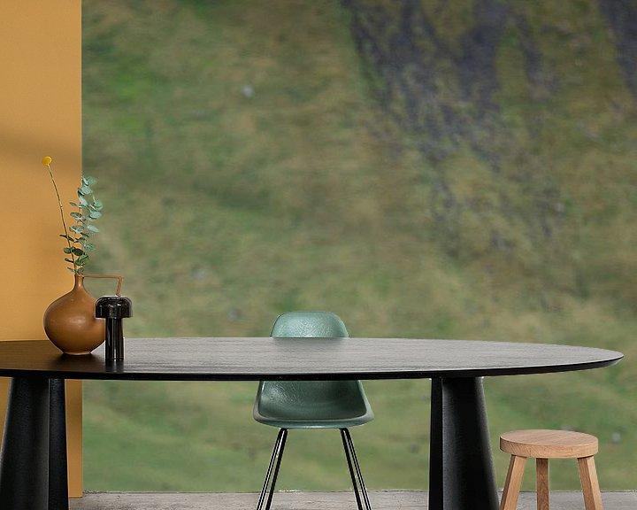 Sfeerimpressie behang: IJslandse Paard van Menno Schaefer