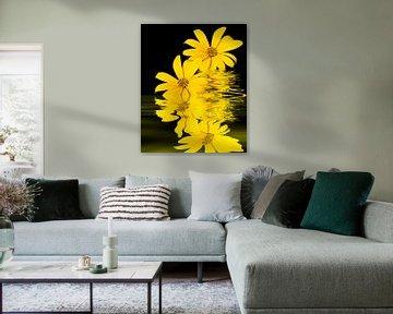 Gelbe Blüten von Martina Fornal
