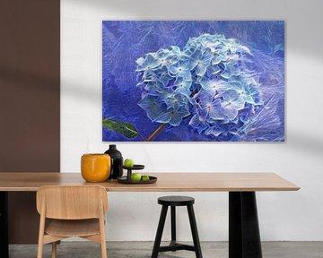 Hortensie in Blau von Martina Fornal