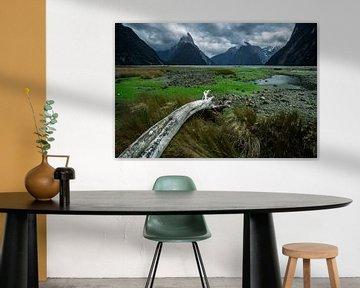 Milford Sound - Zuidereiland, Nieuw-Zeeland van Martijn Smeets