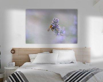 Bij op de Lavendel  von Lisa Groothuis