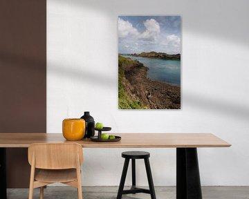 Uitzicht Point du Grouin, Britagne (Franrkijk) van Lisa Groothuis