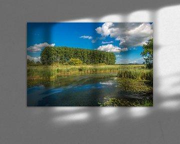 Sommerlandschaft in den Niederlanden. von Fotografie Arthur van Leeuwen