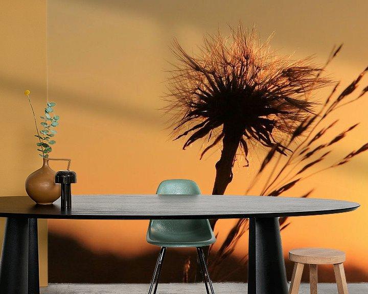 Beispiel fototapete: Sunset und Löwenzahn von Fotografie Sybrandy