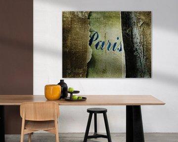 Paris von sophie etchart