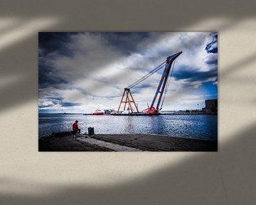 Visser en hijskraan - Aarhus haven sur Tony Buijse