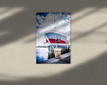 HYDRA - Aarhus Haven van Tony Buijse