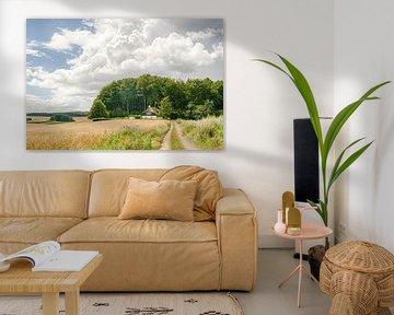 Een korenveld een landweggetje en een boerderij van Tony Buijse