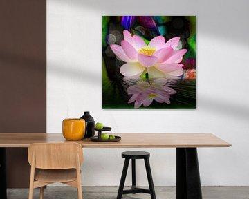 Spiegelung  Lotusblüte van Gertrud Scheffler