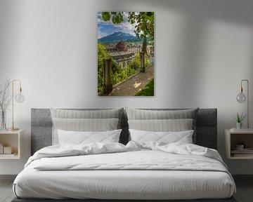 Blick über das südliche Luzern und Umgebung  von Melanie Viola