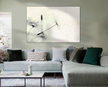 Dandelion van Jana Behr