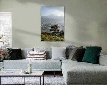 Pico del Teide van Richard Steenvoorden