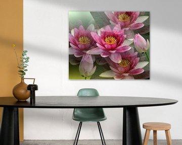 Impressionen einer Lotusblüte von Gertrud Scheffler
