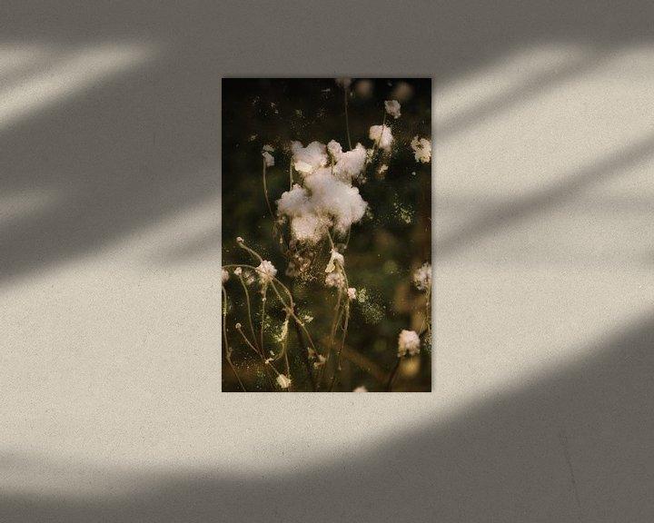 Sfeerimpressie: Herfst tijd - na de bloei van Christine Nöhmeier