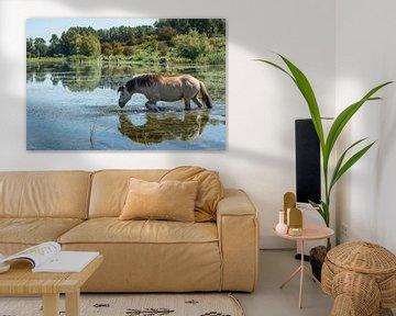 Blaauwe Kamer- zwemmend paard 01 van Cilia Brandts
