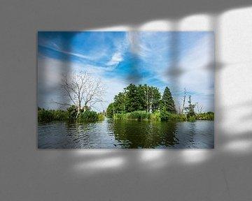 Landscape with trees on the river Peene van Rico Ködder