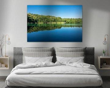 Landscape with lake and trees van Rico Ködder