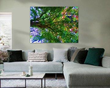 Tree Magic 139 van MoArt (Maurice Heuts)