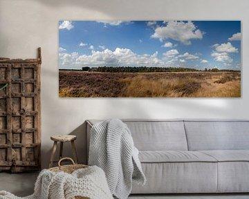 Heide en Bos van Marcel Pietersen