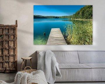 Landschaft am Trünnensee von Rico Ködder